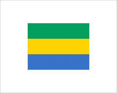 Intoxicación alimentaria de la selección de Gabón