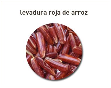 Irradiación no autorizada de levadura roja de arroz en Italia