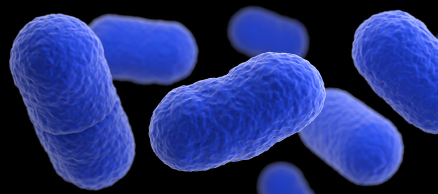 Tercera alerta por listeriosis en septiembre